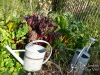 habillage-de-jardin-arrosoirs-23