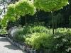 habillage-de-jardin-arrosoirs-42
