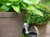 habillage-de-jardin-arrosoirs-50