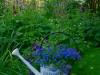 habillage-de-jardin-arrosoirs-54