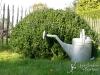habillage-de-jardin-arrosoirs-ath-tournai-lille-15