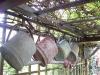 habillage-de-jardin-arrosoirs-ath-tournai-lille-3