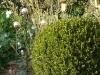 beaux-jardins-Ath-Tournai-Lille--09