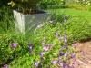 realisation-jardiniere-ath-tournai-lille-7