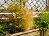 realisation-jardiniere-ath-tournai-lille-8