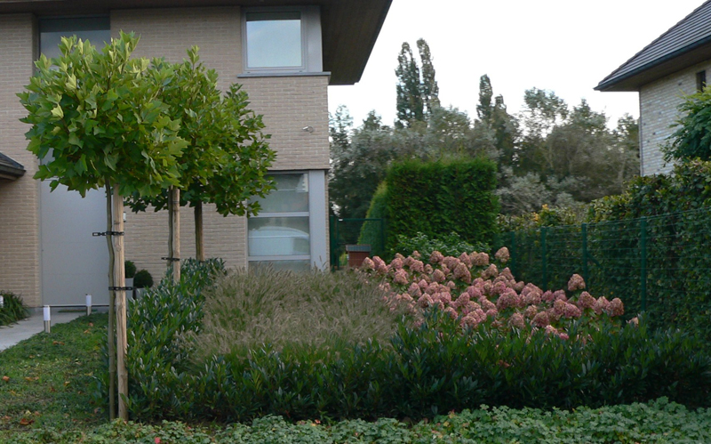 Réalisation de terrasses en pierres bleues - Jardins Du Pays Vert