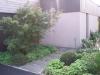 réalisation-jardin-contemporain-Ath-Tournai-Lille-005