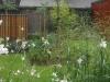 réalisation-jardin-contemporain-Ath-Tournai-Lille-012