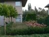 réalisation-jardin-contemporain-Ath-Tournai-Lille-038