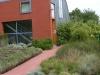réalisation-jardin-contemporain-Ath-Tournai-Lille-045