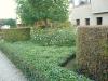 réalisation-jardin-contemporain-Ath-Tournai-Lille-048