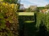 réalisation-jardin-contemporain-Ath-Tournai-Lille-051