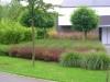 réalisation-jardin-contemporain-Ath-Tournai-Lille-054