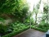 réalisation-jardin-contemporain-Ath-Tournai-Lille-058