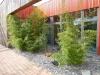 realisation-jardin-d-entreprise-014