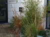 realisation-jardin-d-entreprise-ath-tournai-lille-004