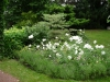 realisation-jardin-de-style-11