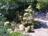 realisation-creation-jardin-japonais-018