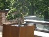 realisation-creation-jardin-japonais-021