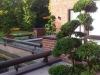 realisation-creation-jardin-japonais-ath-tournai-lille-003
