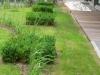 realisation-jardin-semi-public-008