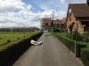 taille-de-haie-Ath-Tournai-Lille-004