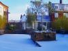 réalisation terrasse bois 26