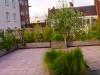 réalisation terrasse bois 36
