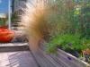 réalisation terrasse bois 39