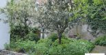 Jardin méditérannéen